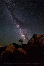 Canyonlands Milky Way